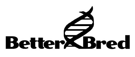 www.betterbred.com